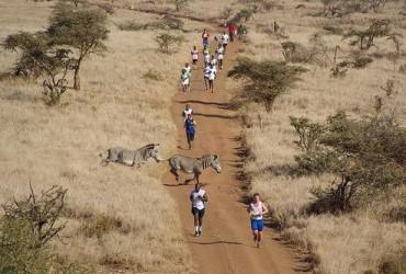 Сафари марафон